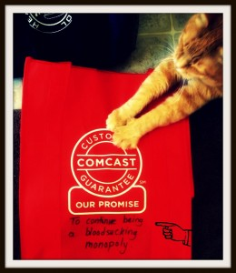 comcast cat