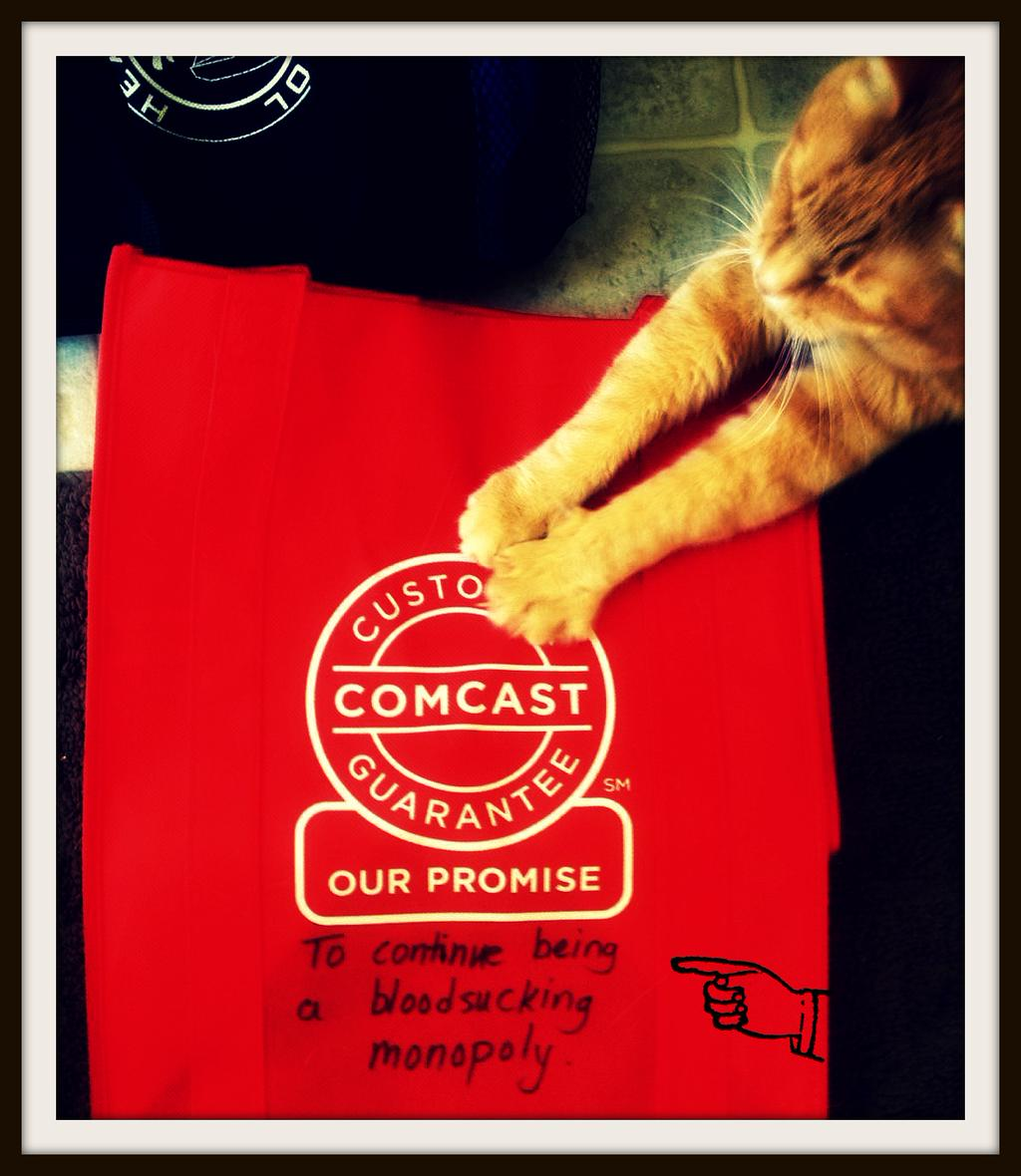 Learning Technology Cats   NomadWarMachine