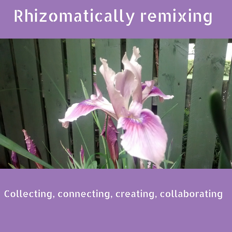 Iris with the words: rhizomatically remixing: collecting, connecting, creating, collaborating