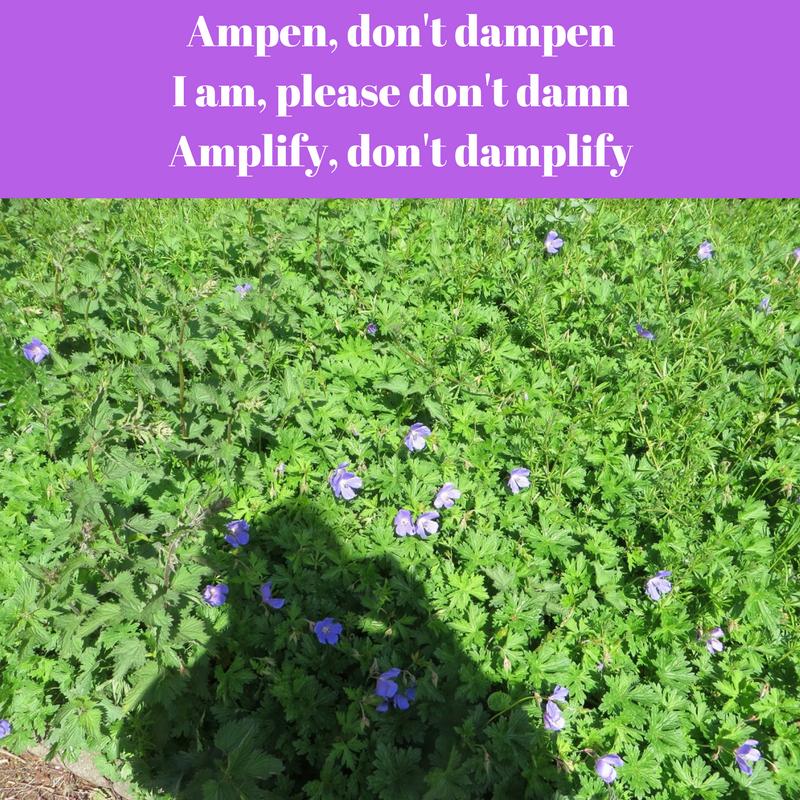 Ampen, don't dampen