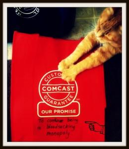 comcast cat
